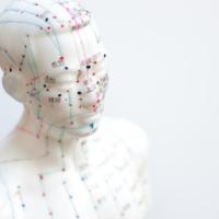 Acupuncture Grid 1
